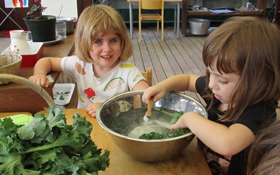 cleaning-the-kale-weve-harvested-we-make-yummy-kale-chips.jpg